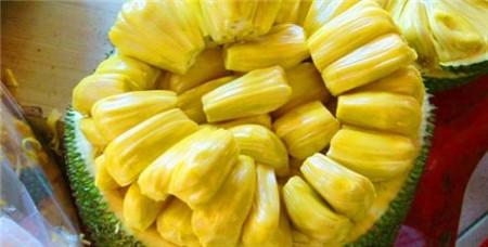菠萝蜜的果肉