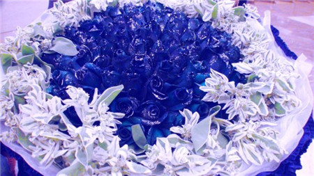 蓝色妖姬花束