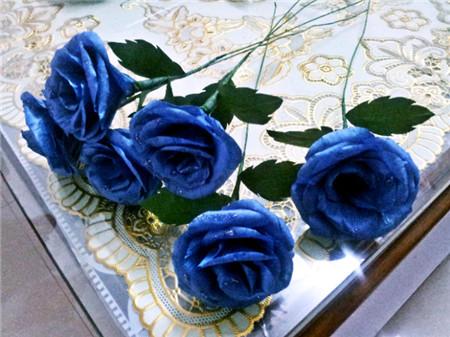 蓝色妖姬花朵