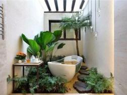 洗手间种满植物是什么感觉