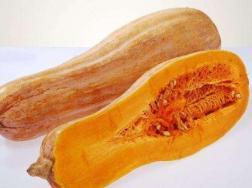 南瓜的常见品种