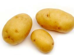 马铃薯的繁殖方式