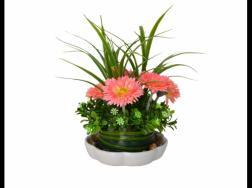 养好花和性格有关系吗